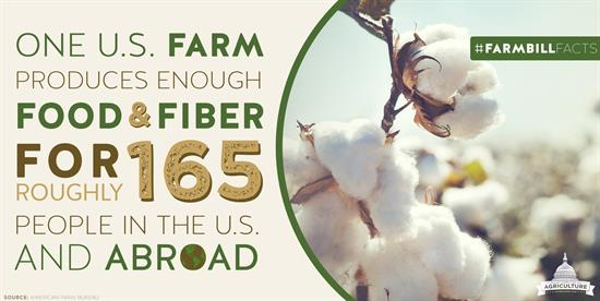 One U.S. farm supplies 165 people with enough food and fiber for an entire year.